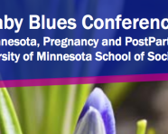 Present at the Beyond the Baby Blues Conference – DEADLINE EXTENDED to Feb. 17th, 2017